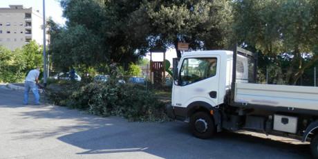raccolta ramaglie e scarti del verde come servizio per privati